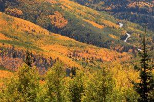 Fall colors_ADG