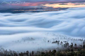 Fog Over Bandelier