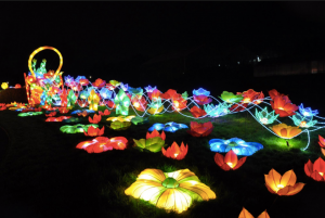 NM Chinese Lantern Festival