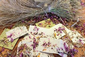 Sunrise Springs Handmade paper